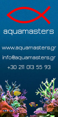 aquamasters